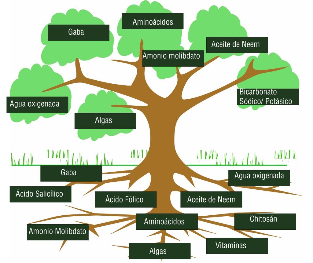 Uso de productos agrícolas